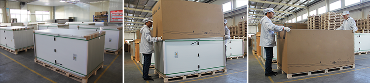 Futuresolar modules packing